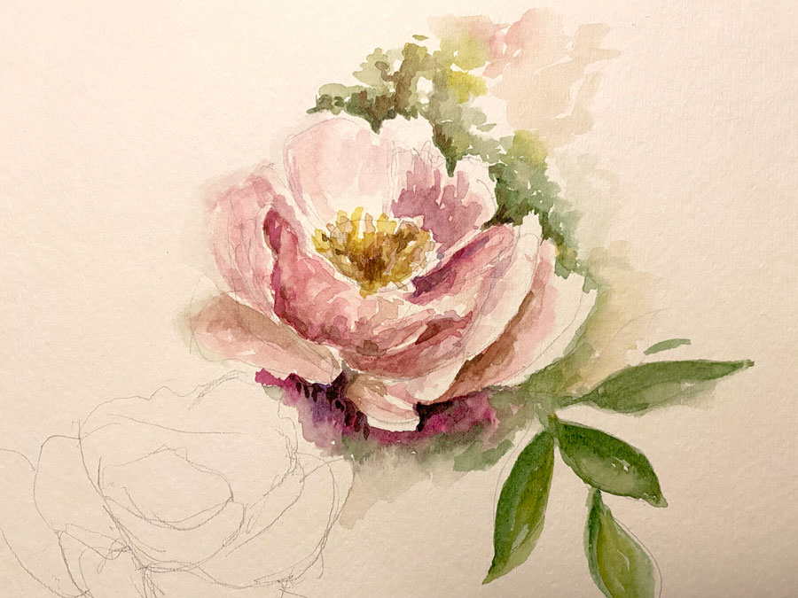 Watercolour painting of flower