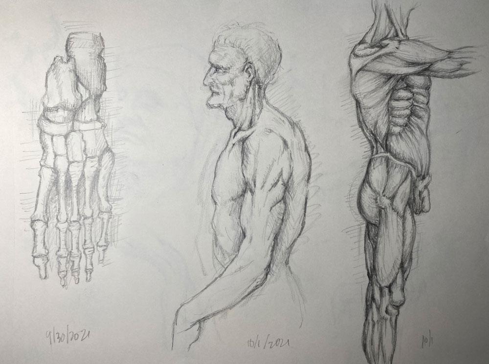 Pencil drawings copied from book about Leonardo da Vinci's- foot skeleton, older man, musculature of male model
